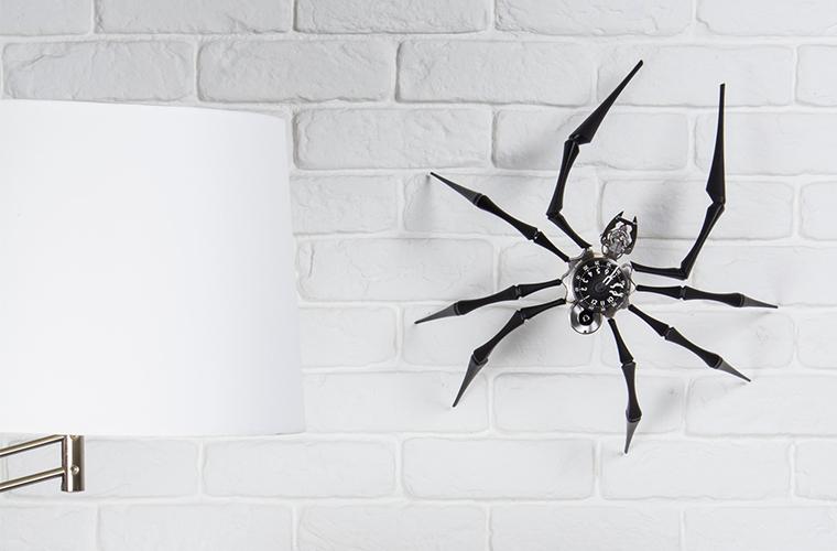 spider-lifetsyle-thumb